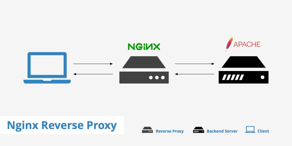 How to install NGINX in CentOS 7 or FreeBSD and configure it to act as a Reverse Caching Proxy for Apache