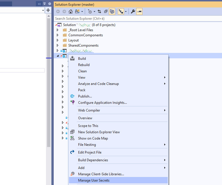 How to securely store passwords in Visual Studio 2019 with Manage User Secrets